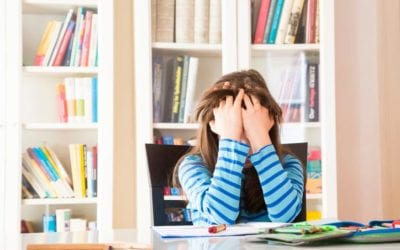 3 Ways a Child's Home Environment Affects School Performance